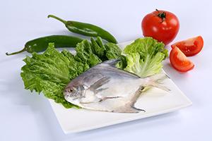 鲜冻白鲳鱼