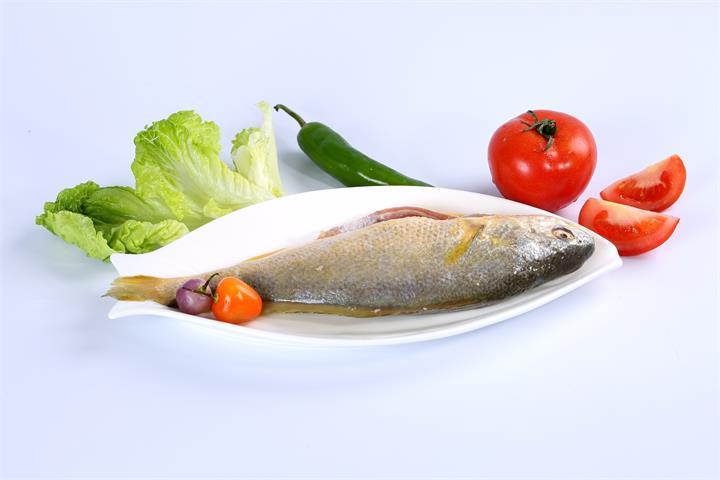 鲜冻黄花鱼